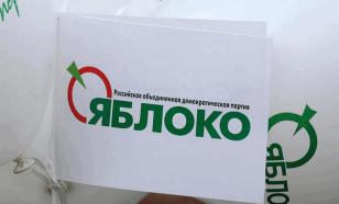 """""""Яблоко"""" на консервации: партию хотят закрыть от посторонних"""