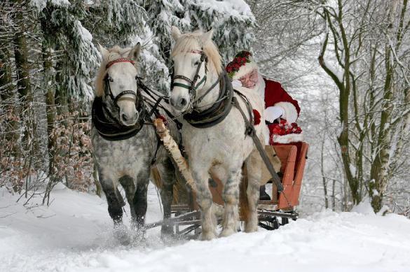 Зачем нам нужен Дед Мороз?