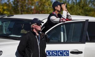 Украина препятствовала работе миссии ПА ОБСЕ в Донбассе
