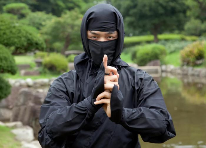 Мельница заблуждений: мифы и правда о ниндзя