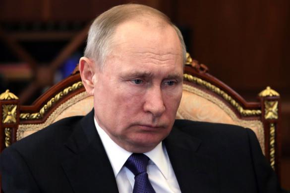 Путин рассказал о будущем дистанционного образования в России