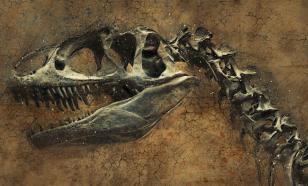 В США обнаружили скелет динозавра с одним когтем на лапах