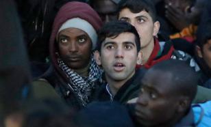 142 тысячи беженцев покинули Турцию