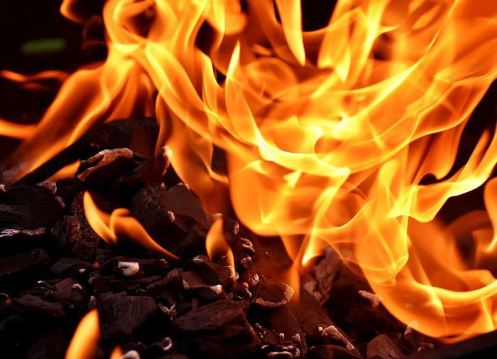 В Курске матери, которая заживо сожгла восьмилетнего сына, дали 15 лет колонии