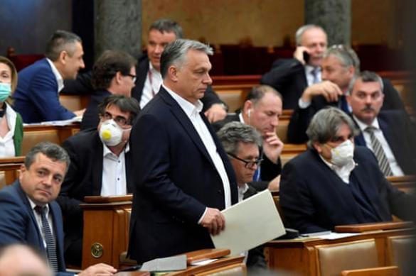 Венгрия готовится к окончательному юридическому поражению трансгендеров