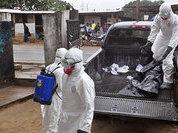 Смертельная Эбола вновь напомнила о себе новой вспышкой заболеваний