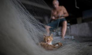 Неудачная рыбалка: взяли за сеть, осудят за воровство
