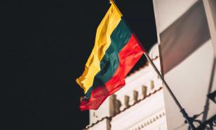 Президент Литвы разрешил военным применять спецсредства на границе с Белоруссией
