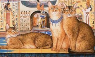 Что сделало кошек священными в Древнем Египте?