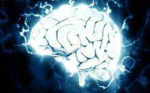 Тревога и стресс позволяют людям контролировать свои действия