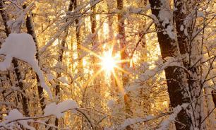 Жителям Санкт-Петербурга не стоит ждать зимы раньше января