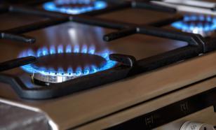 В Совфеде предложили не повышать тарифы на газ и электроэнергию