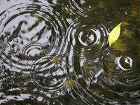 Прогнозы: к выходным погода подарит москвичам дожди.