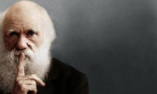 Священник РПЦ заявил, что разговаривал с Дарвином о теории эволюции