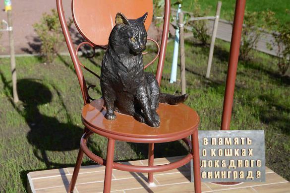 Памятники кошкам, которых знают все