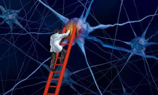 Память можно тренировать с помощью физических нагрузок