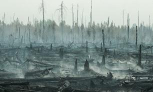 Генпрокуратура: регионы скрыли реальные цифры о пожарах в Сибири