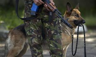 Львовских собак заставили присягнуть на верность Украине