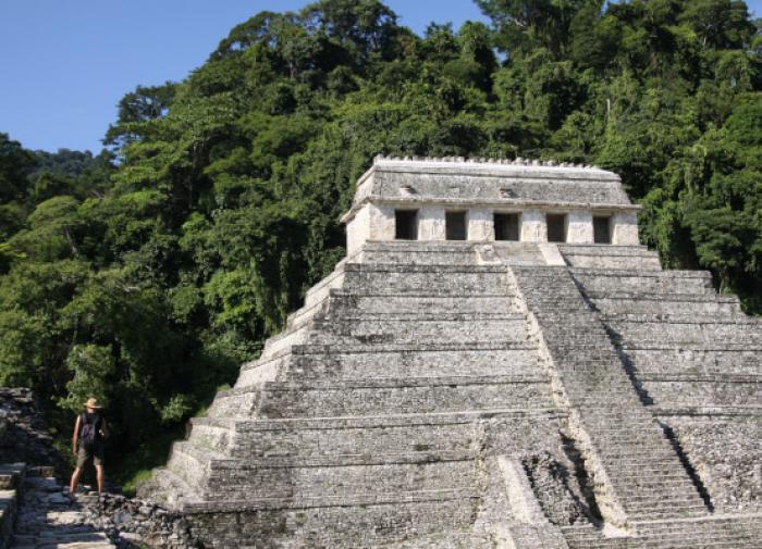 Ученые из США обнаружили причину гибели цивилизации майя