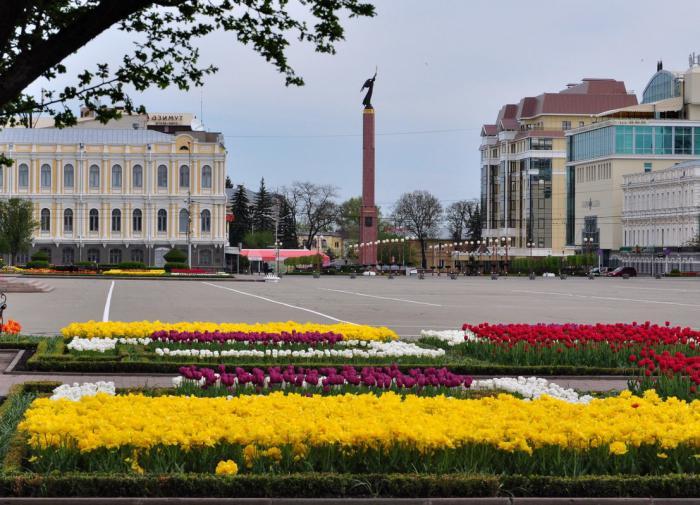 Ставропольские студентки стали жертвами убийцы с утюгом