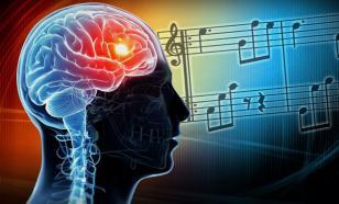 В правительстве опровергли программу по массовому чипированию мозга россиян