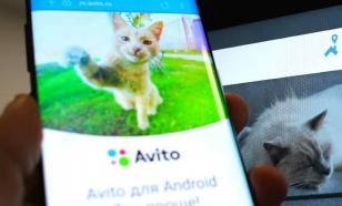 """В Сеть выложили данные 600 тысяч пользователей Avito и """"Юлы"""""""