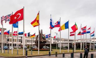 """В чем сила НАТО? Не поверите - """"в демократии и законности"""""""