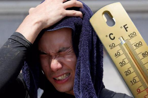 Июль 2019-го - самый жаркий месяц на Земле за всю историю наблюдений