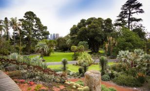 Удмуртский ботанический сад станет площадкой экотуризма