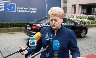 Президент Литвы предупредила Запад о готовящемся нападении России