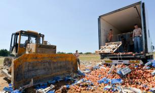 В правительстве усомнились в пользе уничтожения санкционных продуктов