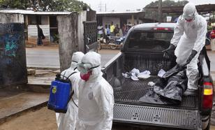 США начали испытывать на людях ГМО-вакцину от Эболы