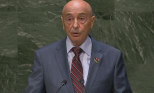 Глава парламента Ливии объяснил Матвиенко, почему ПНС нелегитимно