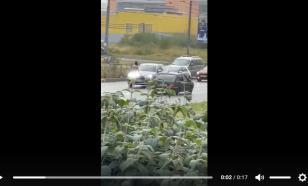 На севере Петербурга задержали мужчину в костюме Адама