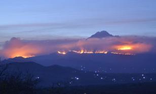 В Африке всем миром тушат пожар на склонах Килиманджаро