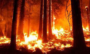Как избежать лесных пожаров