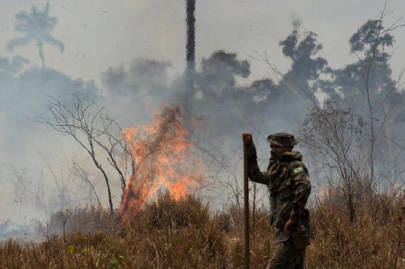 В Забайкалье ликвидирован крупный пожар на территории заказника