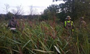 Олимпийский чемпион по вольной борьбе Иваницкий потерялся в лесу