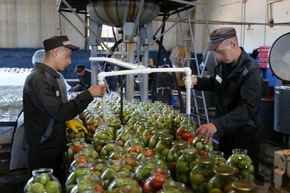 В Брянской области заключенные консервируют овощи