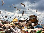 Свалки вытесняют заводы по переработке мусора