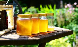 Мёд похож на плазму крови