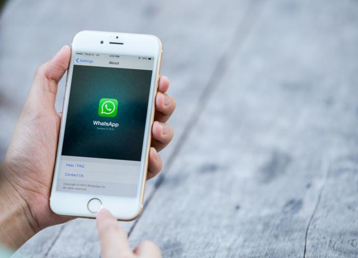 Новые правила пользования WhatsApp