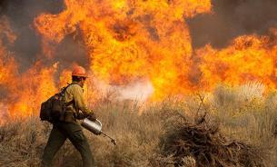 За поджог сухой травы с 2016 года грозит уголовная ответственность