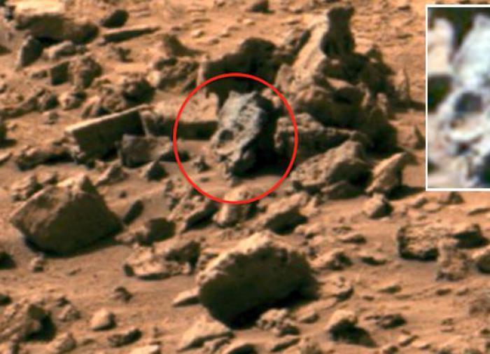 Жизнь на Марсе: в Израиле проводят эксперимент-симуляцию