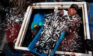 Новые вехи в сотрудничестве России и Перу: От политики до рыболовства