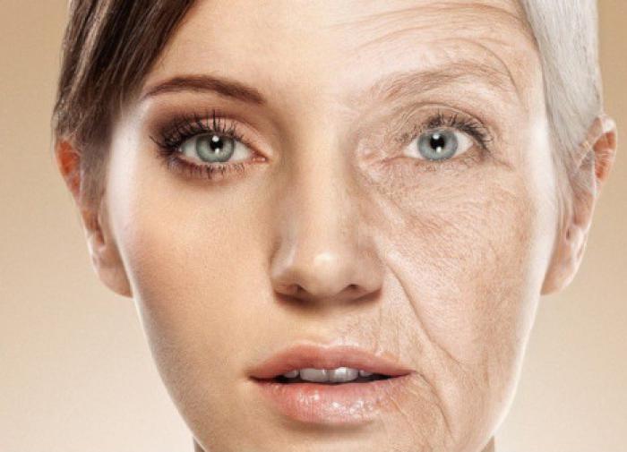 В Китае разработали терапию от старости