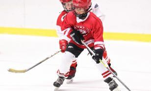 В НХЛ из-за коронавируса возникла нехватка клюшек