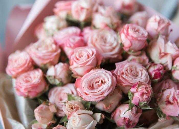 Красивые пионовидные розы