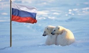 РОССИЯ И США БУДУТ ВМЕСТЕ ЗАЩИЩАТЬ АРКТИЧЕСКИХ МЕДВЕДЕЙ