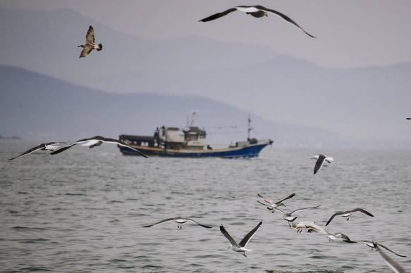 Российские дипломаты вновь посетили задержанных в КНДР моряков